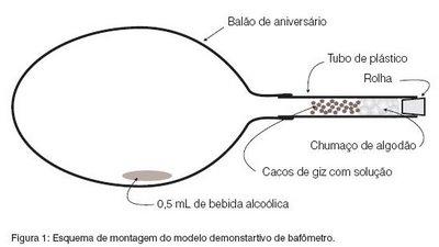 Imagem mostra como a bexiga deve estar, no momento da medição de urina.