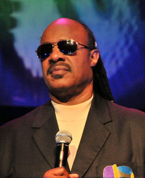 Stevie Wonder interrompeu a entrevista quando perguntado se via algum problema em ser jurado às cegas, no programa.